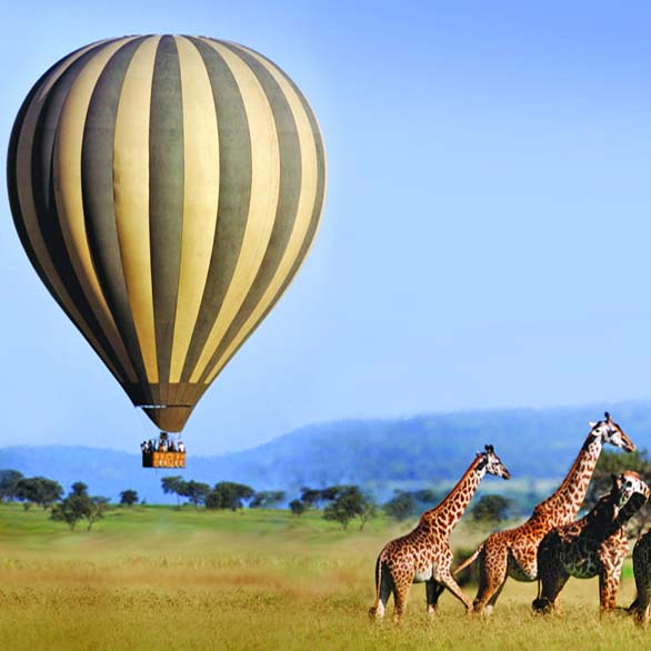SAFARI PACKAGES & DEALS